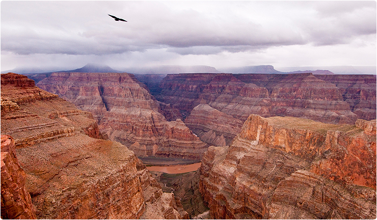 Grand-Canyon-West-Rim-Tours