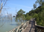 3 DAYS 2 NIGHTS KUCHING WITH BAKO NATIONAL PARK