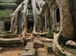 4 DAYS 3 NIGHTS SIEM REAP