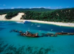 4 DAYS 3 NIGHTS GOLD COAST CHOICE OF THEME PARK + TANGALOOMA TOUR